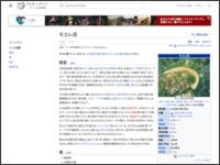 http://ja.wikipedia.org/wiki/%E3%83%A2%E3%82%A8%E3%83%AC%E6%B2%BC