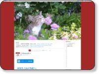 http://sanyo-museum.doorblog.jp/