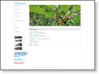http://kuwanomi02.web.fc2.com/