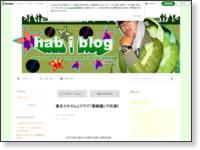 http://ameblo.jp/habiscream/entry-12097414812.html
