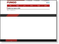 http://fungo.in/ayaka_horii.html