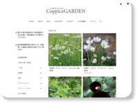 http://www.coppicegarden.com/11690_17551.html
