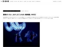 動物のいない、おかしな「ふれあい動物園」 #WXD « WIRED.jp