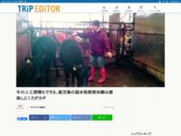 http://jimococo.mag2.com/kyushu/kagoshima/mishimamura/4626