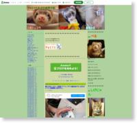 http://ameblo.jp/ferret-kapu/
