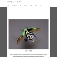 Insect Lab Studio | Original work by Mike Libby