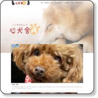 子犬なら山口県のブリーダー「心犬舎」