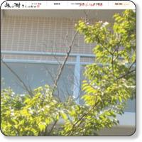 マンション剪定・外構・庭・専門店 縁の樹