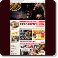 椎茸の仕入はマエノ【宮崎産生産量No1】