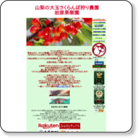 http://www.sakuranbogari.jp/