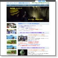 http://www.apnea.jp/