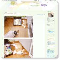 http://blog.goo.ne.jp/reomama518