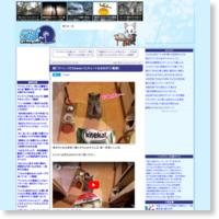 猫「ゴハン、くださぁぁぁい!!」キュートなおねだり(動画)の記事画像