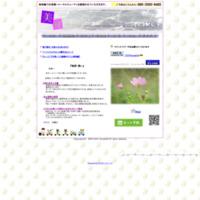 康生治療院 美容鍼灸kousei34