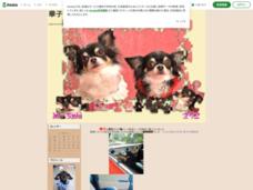 華子とMamaのお気楽生活+さりぃチャン