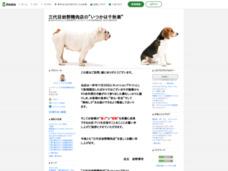 """三代目岩野精肉店の""""いつかは千秋楽"""""""
