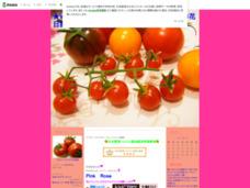 ★Wakana食堂★ 野菜ソムリエのグルメ・レシピ・お花日記 By~Pink Rose~