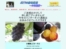 ぶどうの産地直送~中村農園~