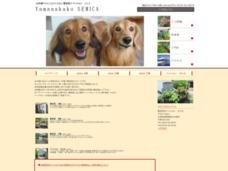 山中湖ペンション 貸別荘&コテージ セミカ