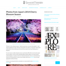 Photos from Japan's 2014 Cherry Blossom Season