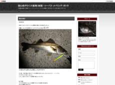 初心者が行く!大阪湾(南港)・シーバス・メバリング・ガシラ