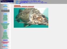 北海道フィッシングサポート釣行記
