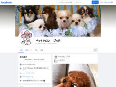 http://www.facebook.com/pages/%E3%83%9A%E3%83%83%E3%83%88%E3%82%B5%E3%83%AD%E3%83%B3-%E3%83%97%E3%83%83%E3%83%81/302227933194825?sk=app_335647389840576