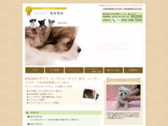 http://www7b.biglobe.ne.jp/~petshop-chacha/