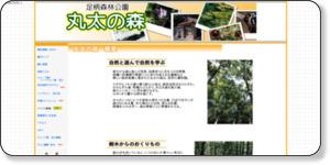 http://k-mask.jp/maruta/html/gaiyou/index.html