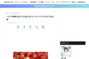 苺ソムリエ直伝!美味しいイチゴの苗の作り方&簡単な育て方&甘い実の見分け方&おすすめの品種と食べ方 | JIBURi.com