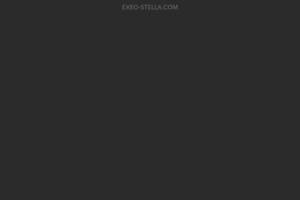 合コンセッティング ステラ サイトのキャプチャー画像