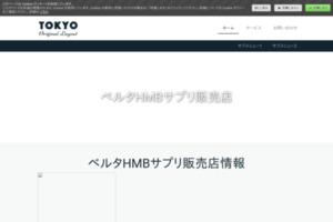 未来(みらい) サイトのキャプチャー画像