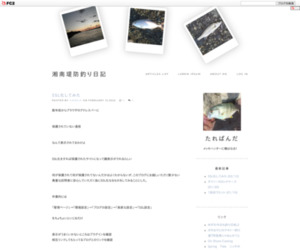 湘南堤防釣り日記