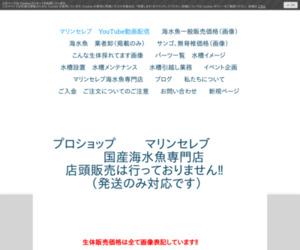マリンセレブ(海水魚専門店