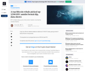 A top Bitcoin whale picked up 3,706 BTC amidst brutal dip, data shows