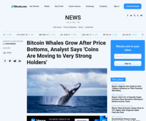 Bitcoin Whales Grow After Price Bottoms, Analyst Says 'Coins Are Moving to Very Strong Holders' – Markets and Prices Bitcoin News