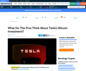 Tesla Motors, Inc. (NASDAQ:TSLA), Community Bankers Trust Corporation. (AMEX:BTC) - What Do The Pros Think About Tesla's Bitcoin Investment? | Benzinga