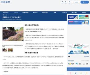 色鮮やか、ツツジ甘い香り:中日新聞Web