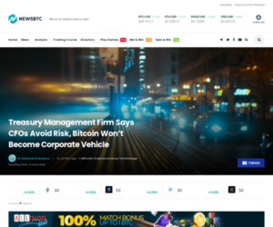 Treasury Management Firm Says CFOs Avoid Risk, Bitcoin Won't Become Corporate Vehicle