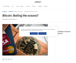 Bitcoin: Boiling the oceans? - Verdict