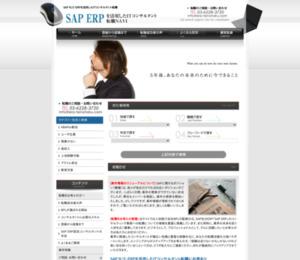 SAP ERPを活用したIT コンサルタント転職NA