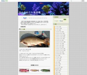 自分だけのお魚図鑑