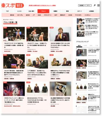 東京スポーツ プロレス大賞