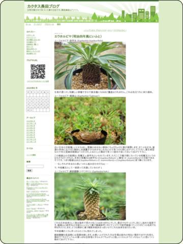http://www.cactusosada.com/index/2009/10/post-e5ec.html