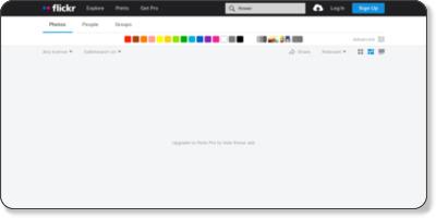 https://www.flickr.com/search/?q=flower