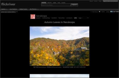 http://www.flickriver.com/photos/narukospa/sets/72157622484229127/