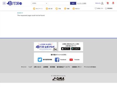 http://www.suruga-ya.jp/feature/1207fuku_summer/plamo.html