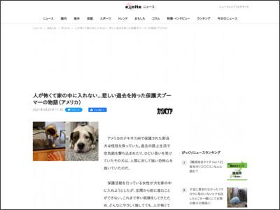 人が怖くて家の中に入れない...悲しい過去を持った保護犬ブーマーの物語(アメリカ) (2021年3月22日) - エキサイトニュース