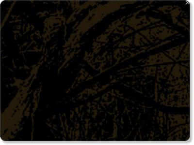 http://yamabito-ongakusai.com/