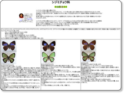 http://insects.life.coocan.jp/Specimens/Shijimichou.htm